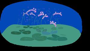 zondagbloemen 24-5-15